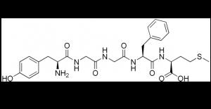 Met-enkephalin strutural representations